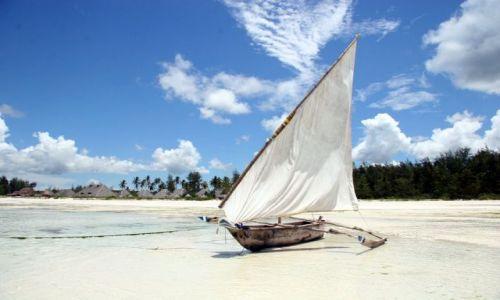 Zdjecie TANZANIA / brak / Zanzibar / Zanzibar