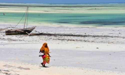 Zdjecie TANZANIA / Zanzibar / wschodnie wybrzeże / W czasie odpływu