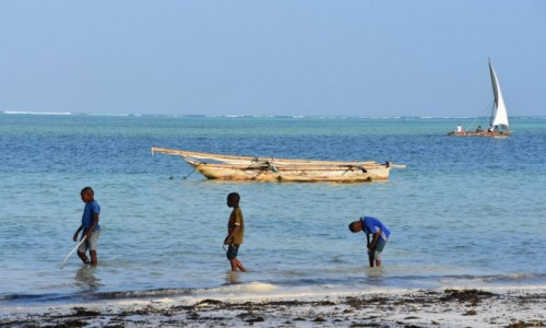 Zdjecie TANZANIA / Zanzibar / wybrzeże wschodnie / Popołudniową porą...