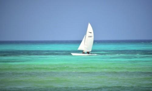 Zdjecie TANZANIA / Zanzibar / wschodnie wybrzeże / Żeglować