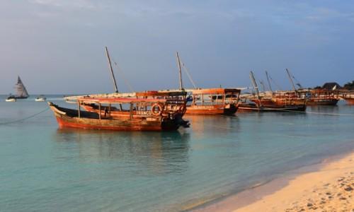 Zdjecie TANZANIA / Zanzibar / zatoka w Kendwa, zachodnie wybrzeże / W promieniach zachodzącego słońca