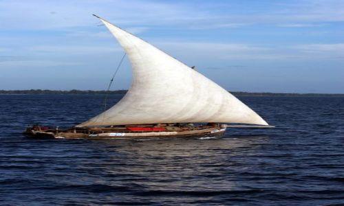 Zdjecie TANZANIA / brak / Zanzibar / byle wiatr był...