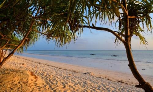 Zdjecie TANZANIA / Zanzibar / wschodnie wybrzeże / ech...... pomarzyć, wschód słońca na plaży