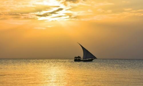Zdjęcie TANZANIA / Zanzibar / północne wybrzeże / W złotych promieniach słońca
