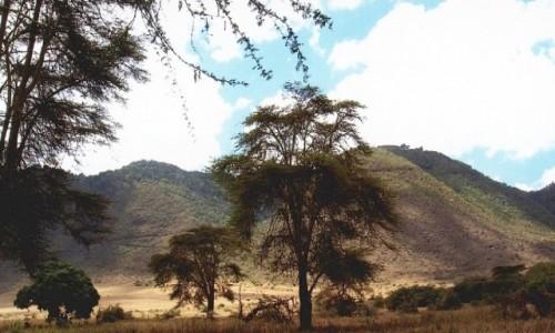Zdjęcie TANZANIA /  Ngorongoro / j.w. / obrazki z kaldery