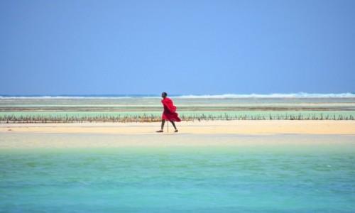 Zdjęcie TANZANIA / Zanzibar / wschodnie wybrzeże / Masaj