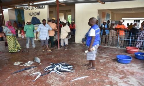 Zdjecie TANZANIA / Zanzibar /  wioska Nungwi, wybrzeże północne / Aukcja na targu rybnym w Nungwi