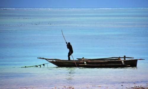 Zdjęcie TANZANIA / Zanzibar / wybrzeże wschodnie / Przy brzegu