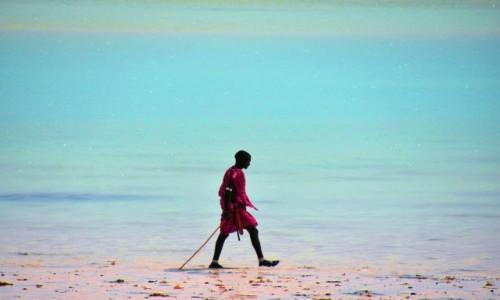 Zdjecie TANZANIA / Zanzibar / wybrzeże wschodnie / Masaj