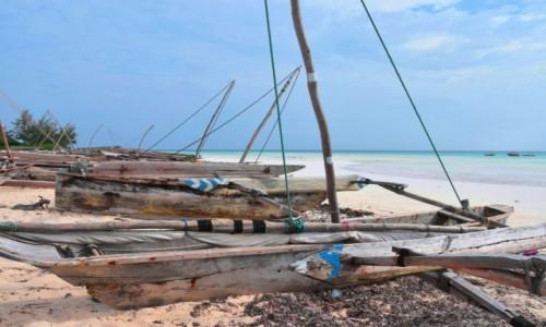 Zdjecie TANZANIA / Zanzibar / północne wybrzeże / Ngalawy