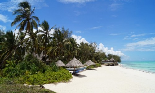 Zdjecie TANZANIA / Zanzibar / Pongwe / Plaża marzeń
