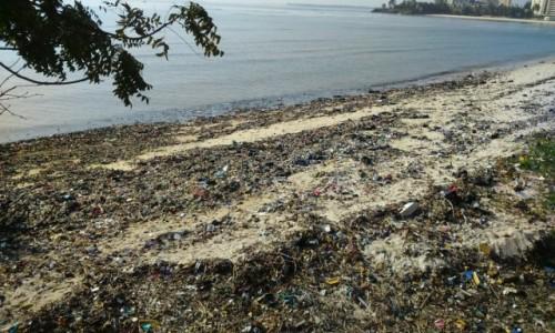 TANZANIA / Dar Es Salaam / zatoka Palm Beach / z ręcznikami nad ocean i .........