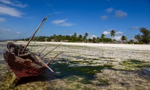 Zdjecie TANZANIA / Uroya / Uroa public beach / Odpływ