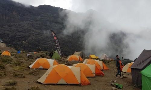 Zdjecie TANZANIA / Kilimandżaro /   / Barranco Wall