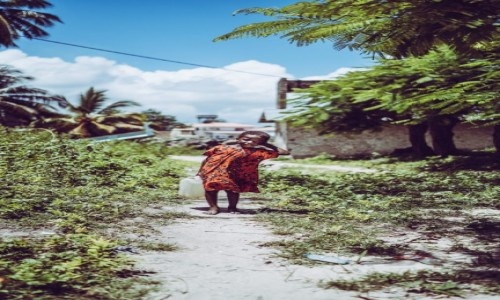 Zdjecie TANZANIA / Zanzibar / Paje / Wioska Paje