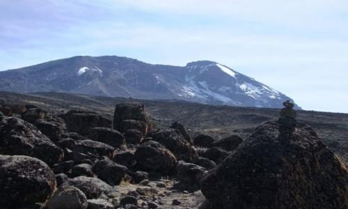 Zdjęcie TANZANIA / Kilimandżaro / Szlak na Kilimandżaro / Kilimandżaro