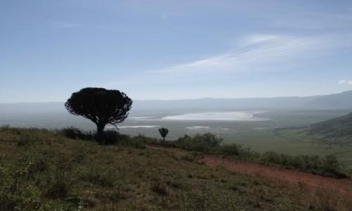 TANZANIA / Afryka Środkowa / Park Ngorongoro / krater Ngorongoro