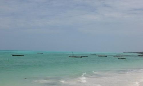 Zdjecie TANZANIA / Zanzibar / Jambiani / Zanzibar