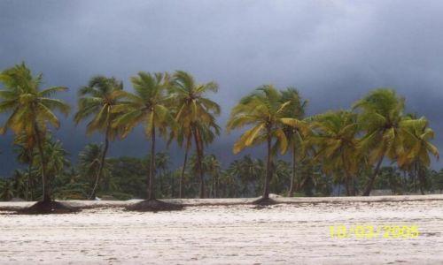 Zdjecie TANZANIA / Zanzibar / Jambiani / przed burzą