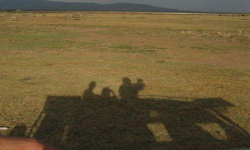 Zdj�cie TANZANIA / NGORONGORO / sawanna / z innej perpektywy