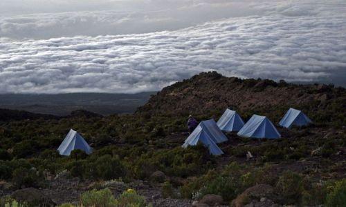 Zdjecie TANZANIA / Masyw Kilimandżaro / Obóz na Marango Road / Kilimandżaro 6