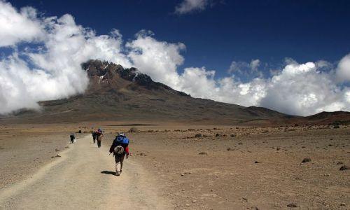 Zdjecie TANZANIA / Masyw Kilimandżaro / Droga Marango Road / Droga w kierunku Mawenzi