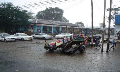 Zdjęcie TANZANIA / północna Tanzania  / Arusha / pokropiło....