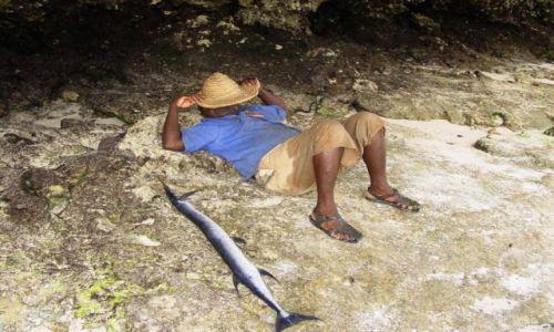 Zdjecie TANZANIA / Zanzibar / plaża / odpoczynek w cieniu...