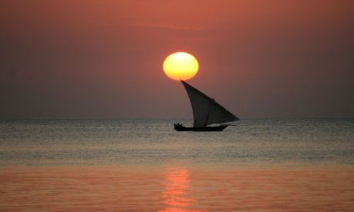 Zdjęcie TANZANIA / Zanzibar / Nungwi / Spokoj ...