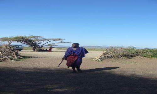TANZANIA / Serengeti Park / Serengeti Park / Masaj w swojej niebiesko-czerwonej narzucie