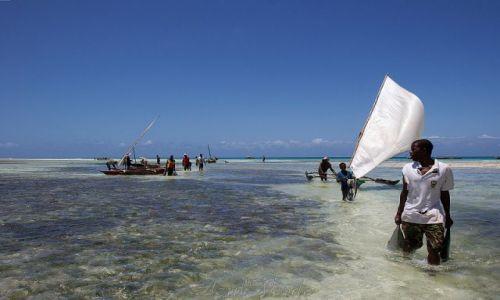 Zdjecie TANZANIA / brak / Zanzibar / Powrót z połowu