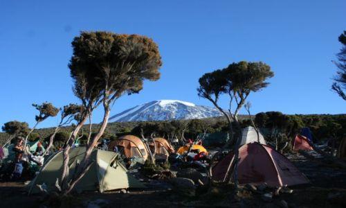 Zdjecie TANZANIA / - / kilimandżaro / tam idziemy!