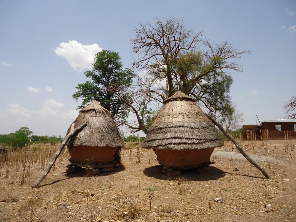 Zdjęcia: Koutammakou, Region Kara, Spichlerzyki, TOGO