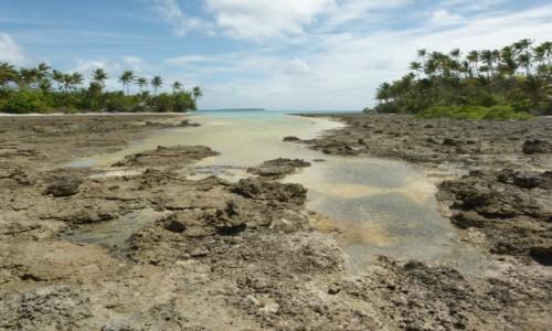 Zdjecie TOKELAU (Nowa Zelandia) / Tokelau / Atafu / Na rafie