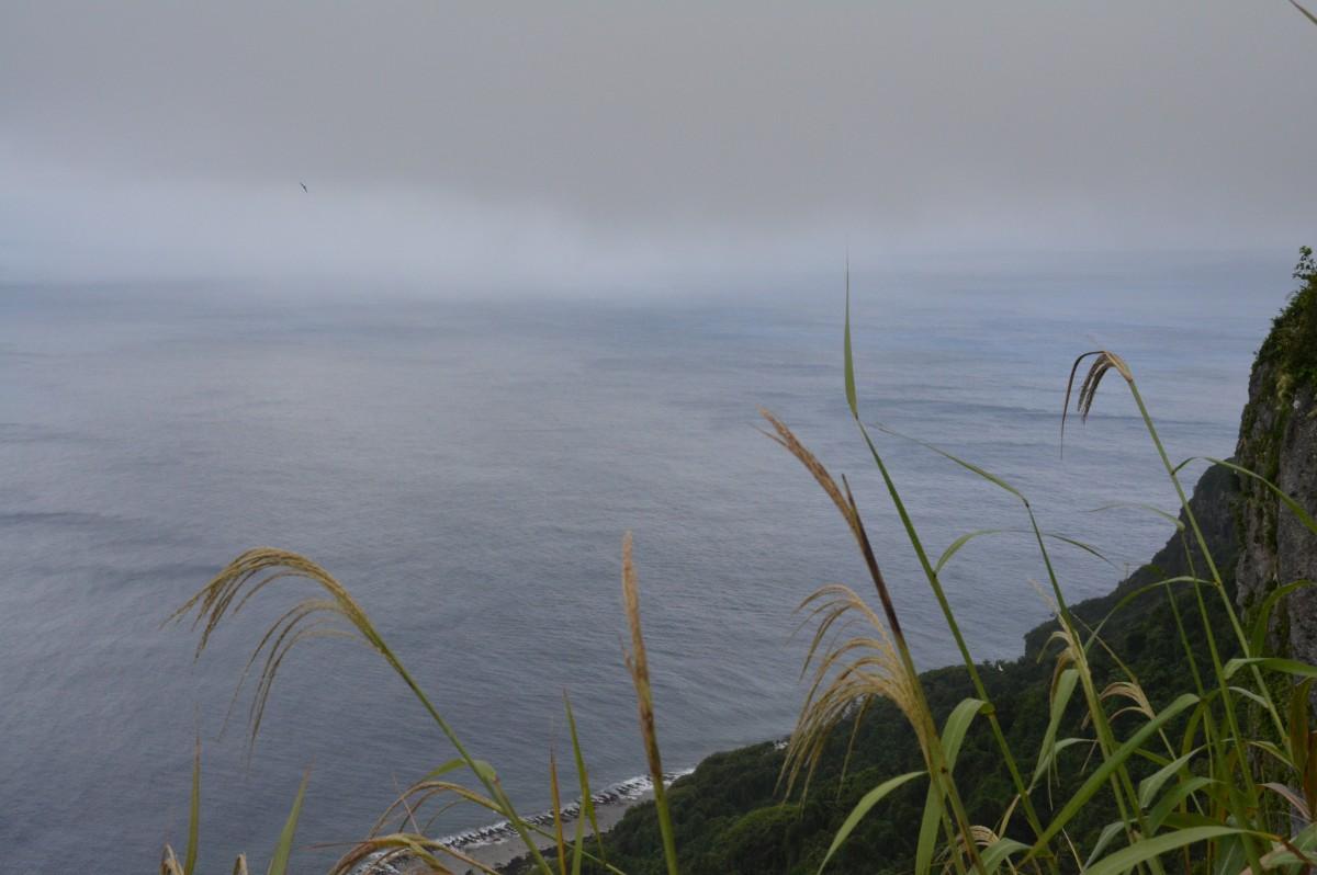 Zdjęcia: Park Narodowy Eua, Eua, Czasem się patrzy z góry, TONGA