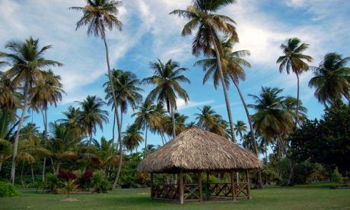 Zdjęcie TRYNIDAD I TOBAGO / Tobago / Crown Point / Chatka w Pigeon Point