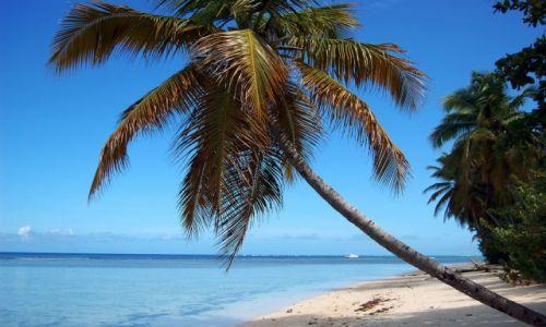 Zdjęcie TRYNIDAD I TOBAGO / Tobago / Crown Point / Most inviting beach scene