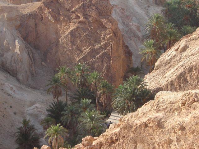 Zdjęcia: Nefta, Pd. Tunezja, Kraina Ksarów, TUNEZJA
