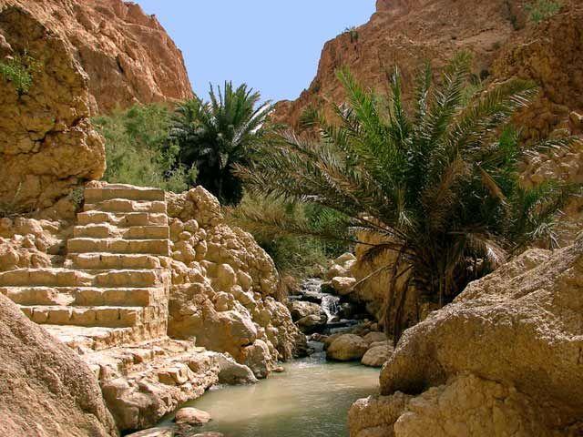 Zdjęcia:  oaza  górska- Chebika,, Gory Atlas, jak w raju, TUNEZJA