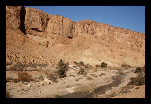 Zdjęcia: okolice metlaqui, okolice metlaqui, okolice metlaqui, TUNEZJA