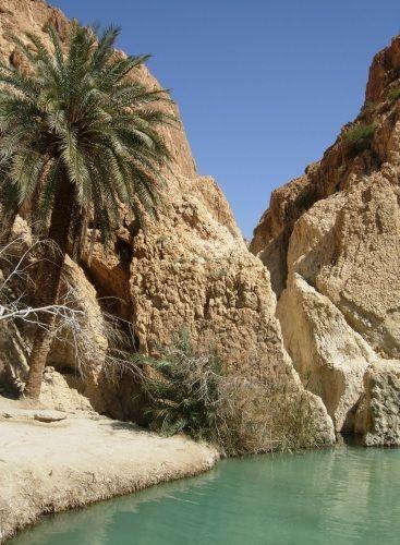 Zdjęcia: Chebika, Gafsa, Oaza Chebika, TUNEZJA