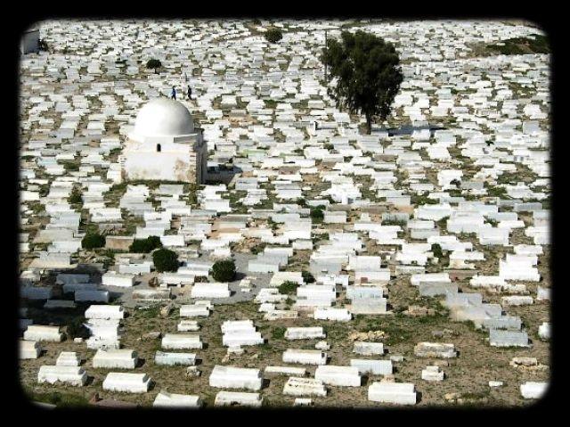 Zdjęcia: MONASTIR, SAHEL, Cmentarz Muzułmański, TUNEZJA