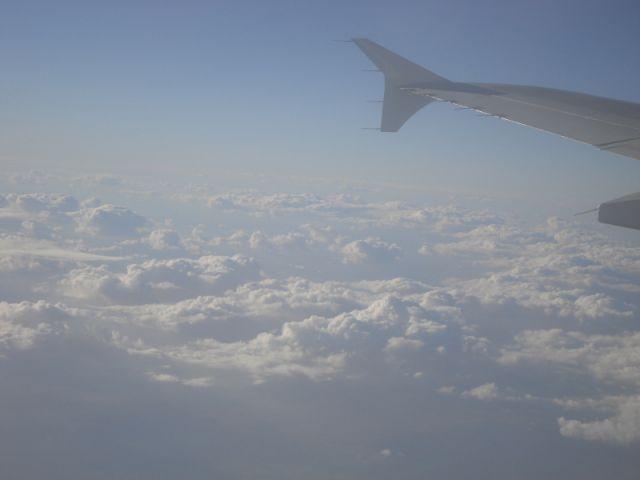 Zdjęcia: Djerba, Djerba, powrót :(, TUNEZJA
