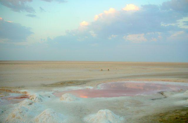 Zdjęcia: SLONE JEZIORO CHOTT EL JERID, slone jezioro o swicie, TUNEZJA