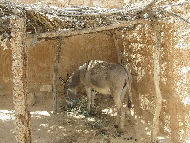 Zdjęcia: okolice Matmaty, posiłek, TUNEZJA