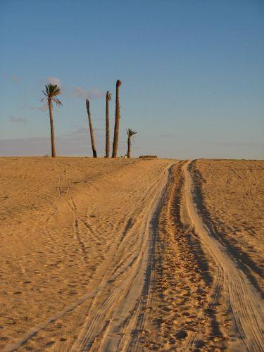 Zdjęcia: W głębi kraju, Pustynia, TUNEZJA