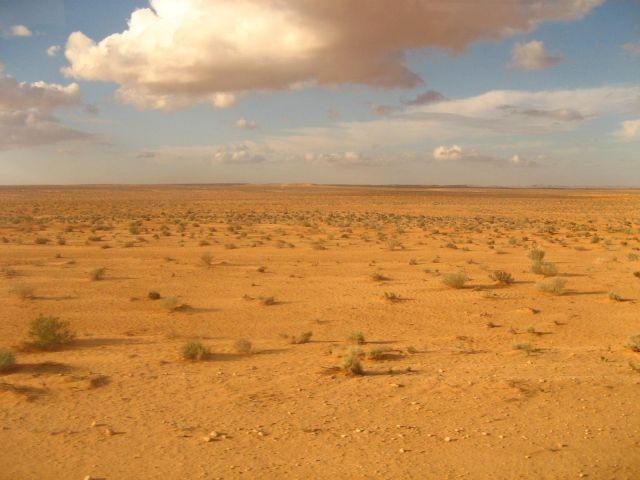 Zdjęcia: Tunezja, Gdzieś po drodze, TUNEZJA