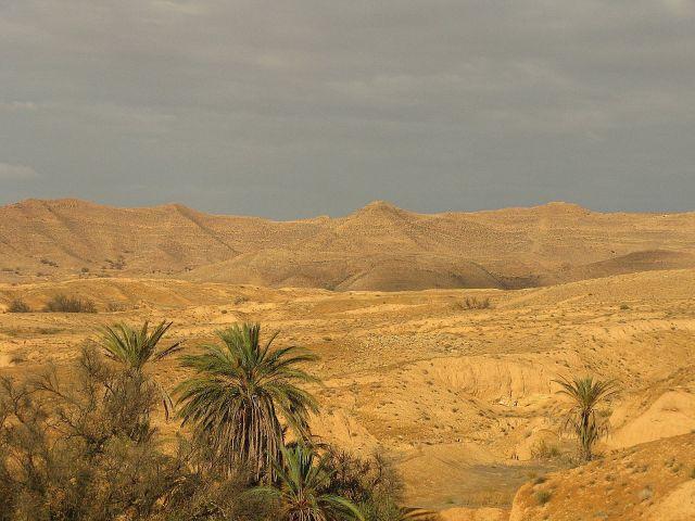 Zdjęcia: Gdzieś po drodze na południe, Tunezja, TUNEZJA