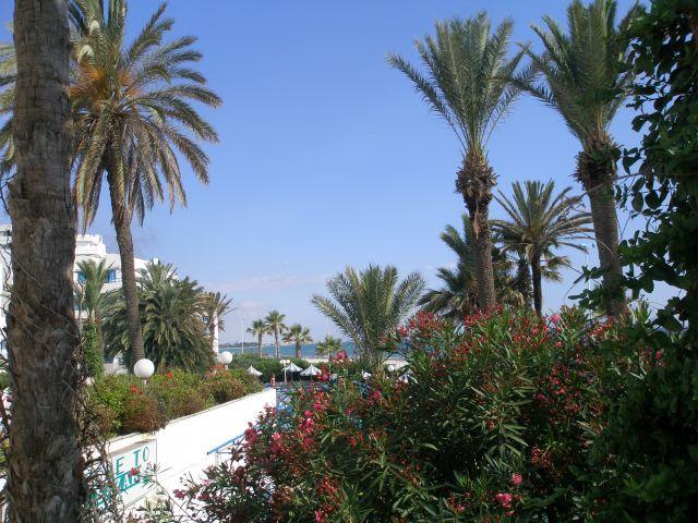 Zdjęcia: Sousse, EGZOTYKA, TUNEZJA
