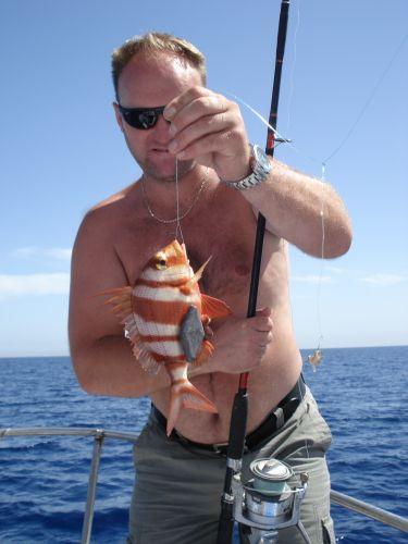 Zdjęcia: morze, port el kantui, złota rybka?, TUNEZJA